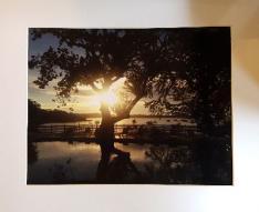My Panama Photo Contest Winners
