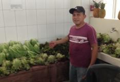 Shop at the Río Hato Market