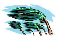 Windy days ahead in Coronado